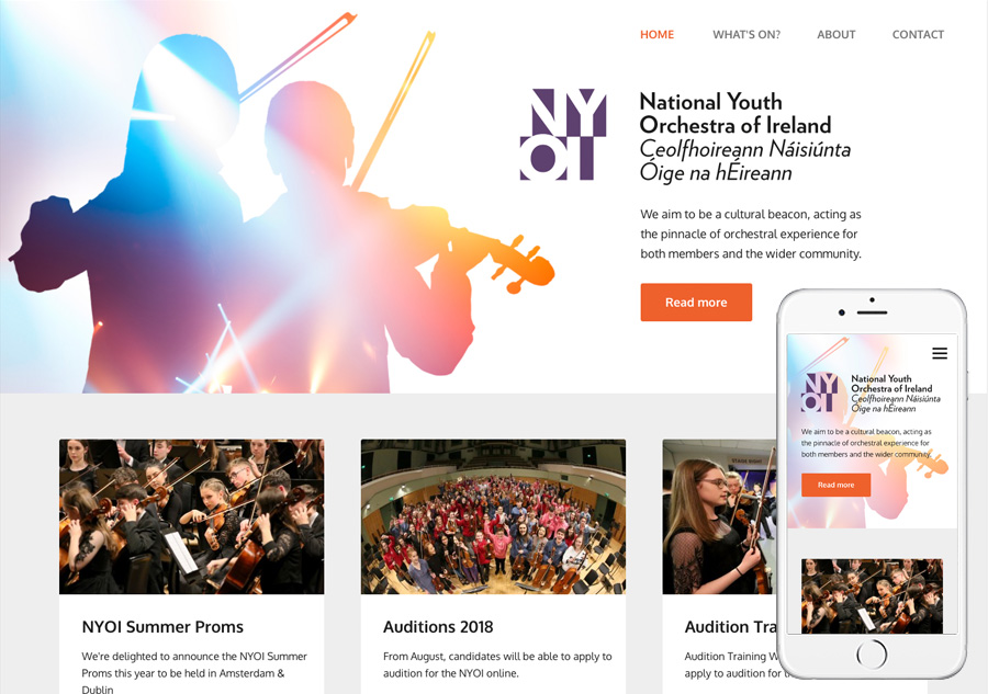 National Youth Orchestra of Ireland